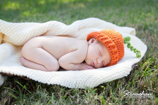 Kylie Mae baby photos pumpkin