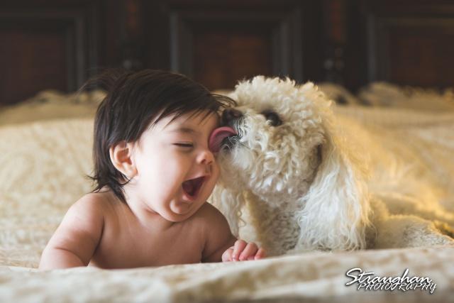 Keagan's three month shoot Bailey licking him