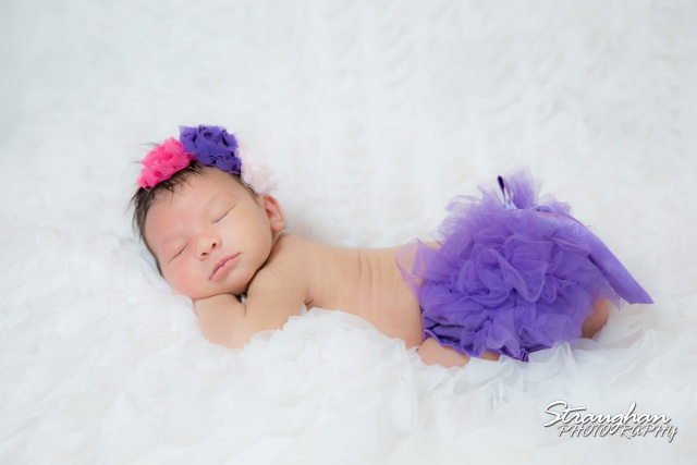 Kaily Newborn Studio Sitting