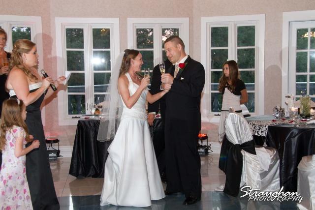 Castle Avalon Wedding Melissa and Ross toast