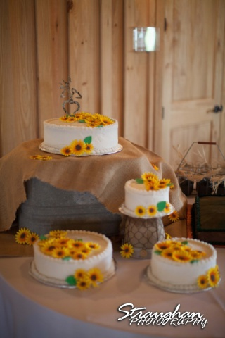 Lindsey and Tommy's Wedding, Boulder Springs cakes