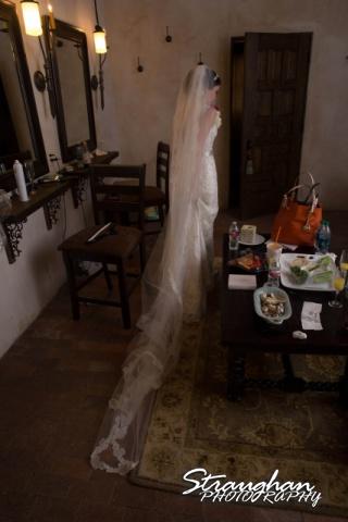 Jackie and Steve's wedding, dress back