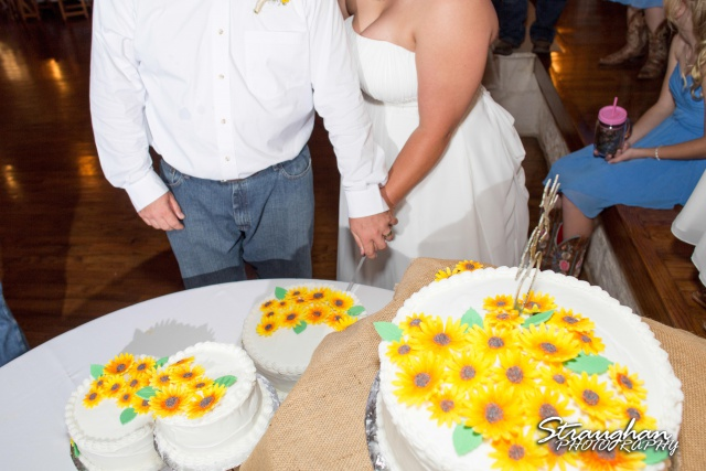 Lindsey and Tommy's Wedding, Boulder Springs cake cutting