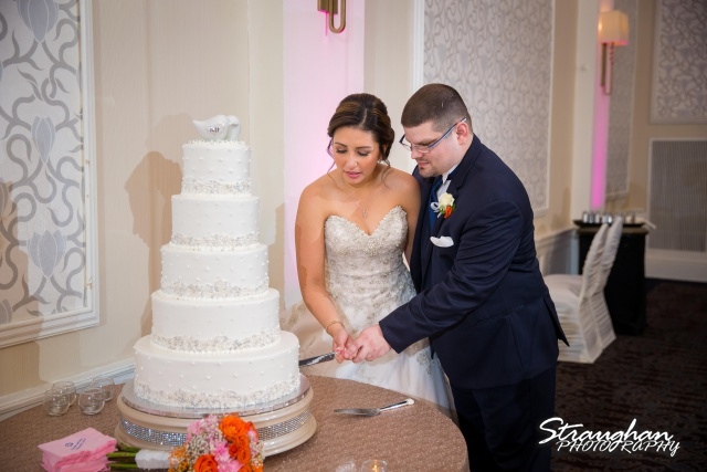 Amanda -Joey wedding Sheraton Gunter cake cutting