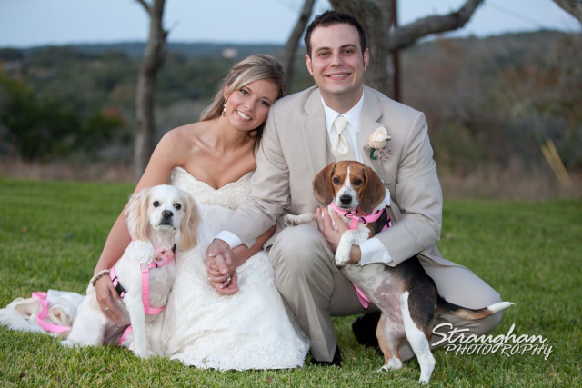 Boulder Springs Wedding dogs