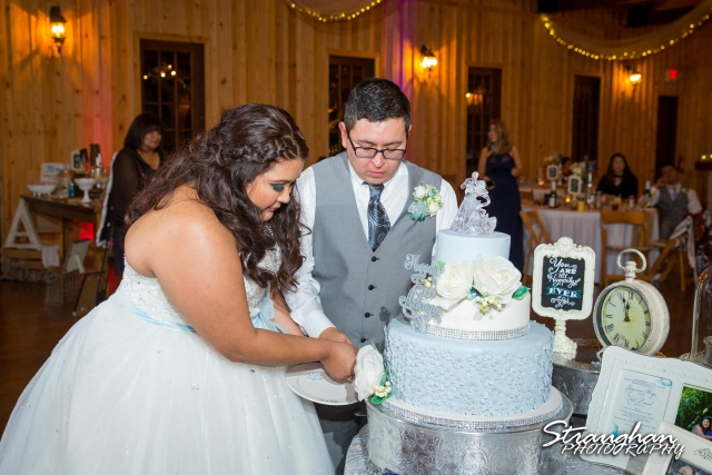 Cheyenne wedding the Springs Boerne cake cutting