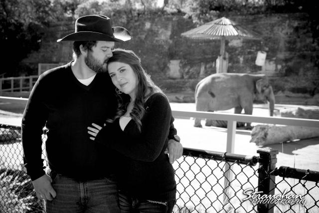 Michelle engagement San Antonio Zoo elephant
