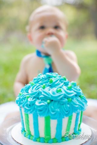 Jacob's cake smash cake photo