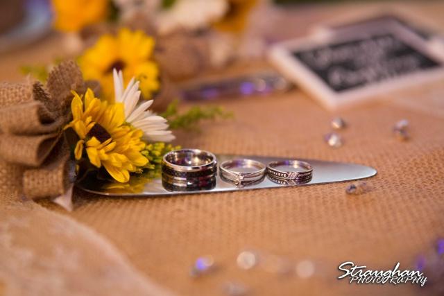 Wedding Faithville Village Devon rings