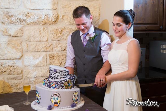Josh DIY wedding Spring Branch cake cutting
