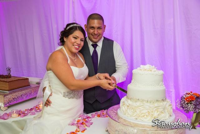 Lori  Joe wedding Sheraton Gunter cake cutting