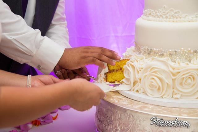 Lori and Joe wedding Sheraton Gunter cake closeup