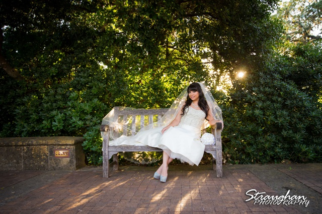 Jessica M's Bridal McNay Art Museum bench far back