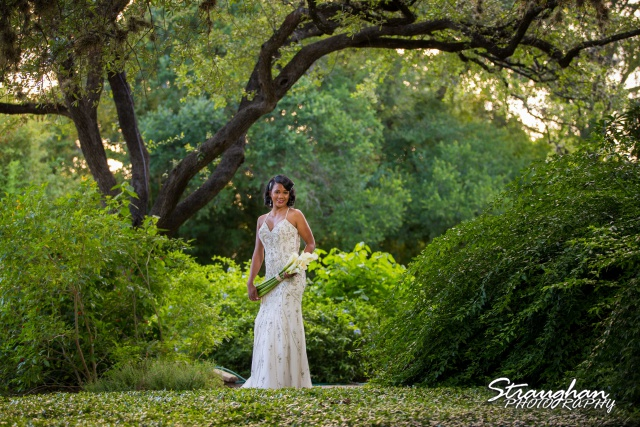 Jennifer Moore's Bridal Sitting at Landa Library standing in front of the trees