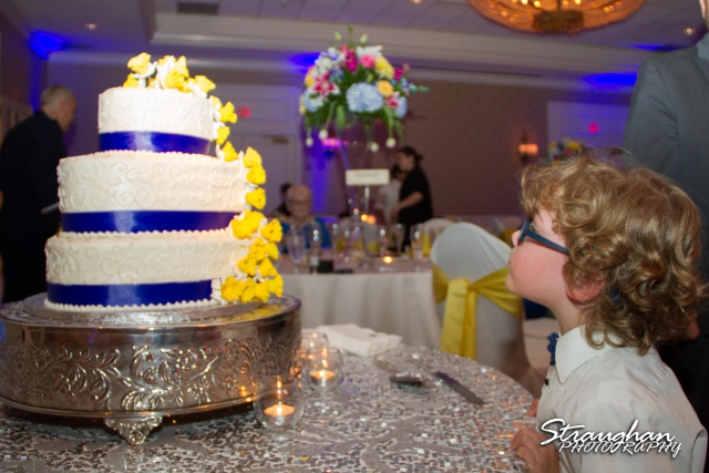 Jazmine's wedding Omni de la Mansion kid and cake