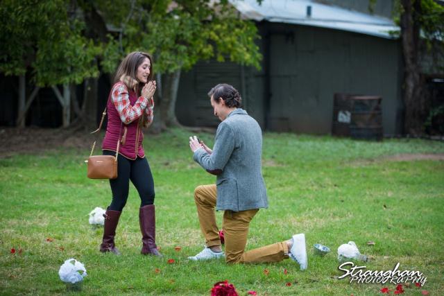 Kristina proposal Gruene on his knee
