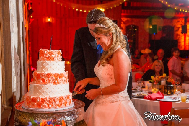 LeeAnn's wedding Boulder Springs  cake cutting