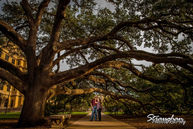 Lauren and Micah engagement Texas A&M Century Tree