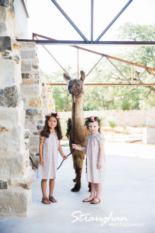 Park 31 styled shoot kids and llamas