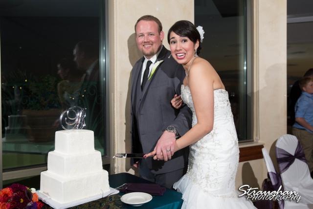 Alexis wedding Plaza Lecea cake cutting