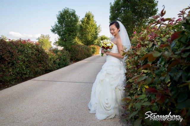Rynah bridal Gardens of Cranesbury View on the path by roses