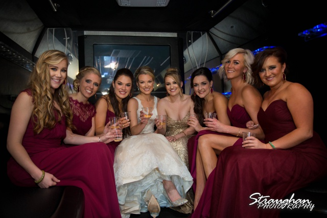 Sarah Higley wedding Bella Springs  toast with girls