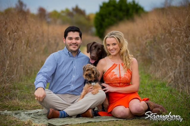 Sarah Higley eengagement cibolo natural area with dogs sitting