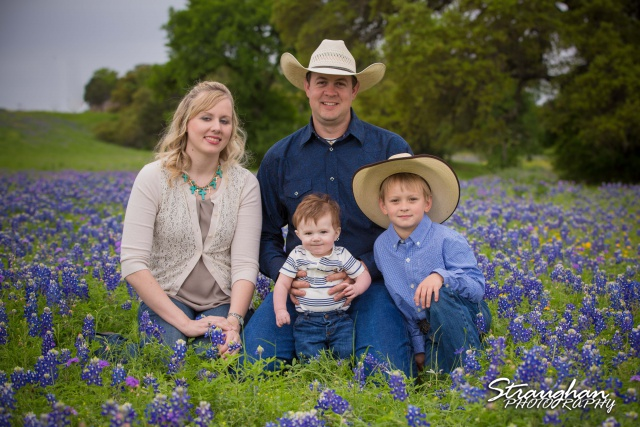 Bluebonnet mini sessions 2015 in New Braunfels, Texas.