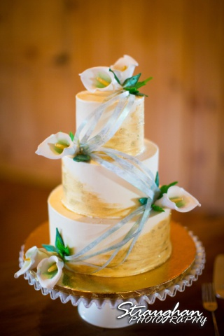 The Springs in New Braunfels at Stonehaven Hall cake