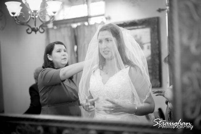 Tony Wedding Rio Plaza veil over