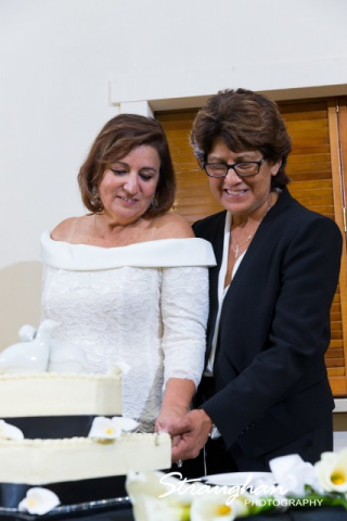 Toni's Wedding Schertz cake cutting