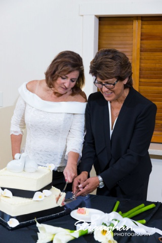 Toni's Wedding Schertz cake cutting laughing