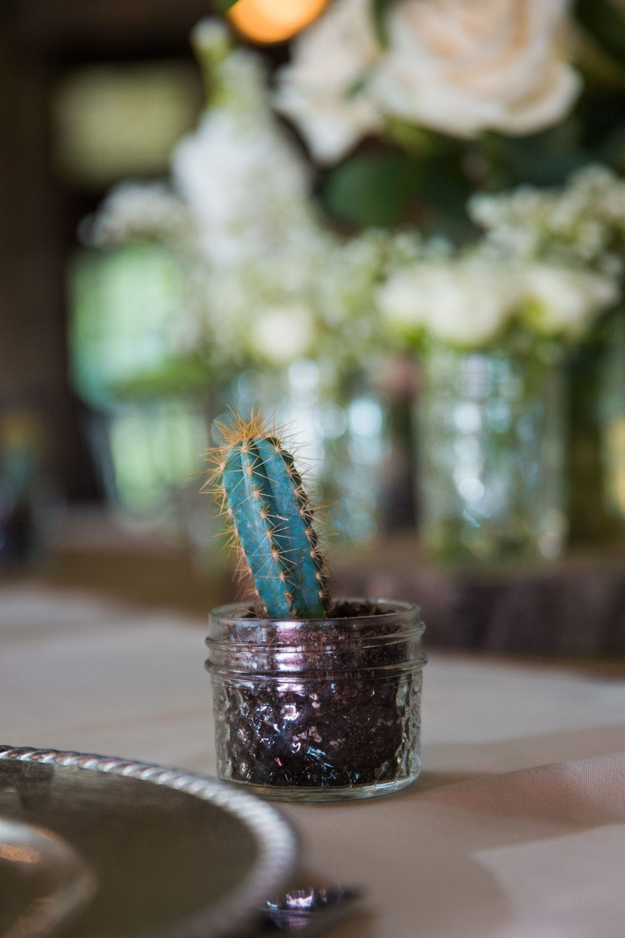 Aamber wedding Canyon Springs Golf Course centerpiece little cactus