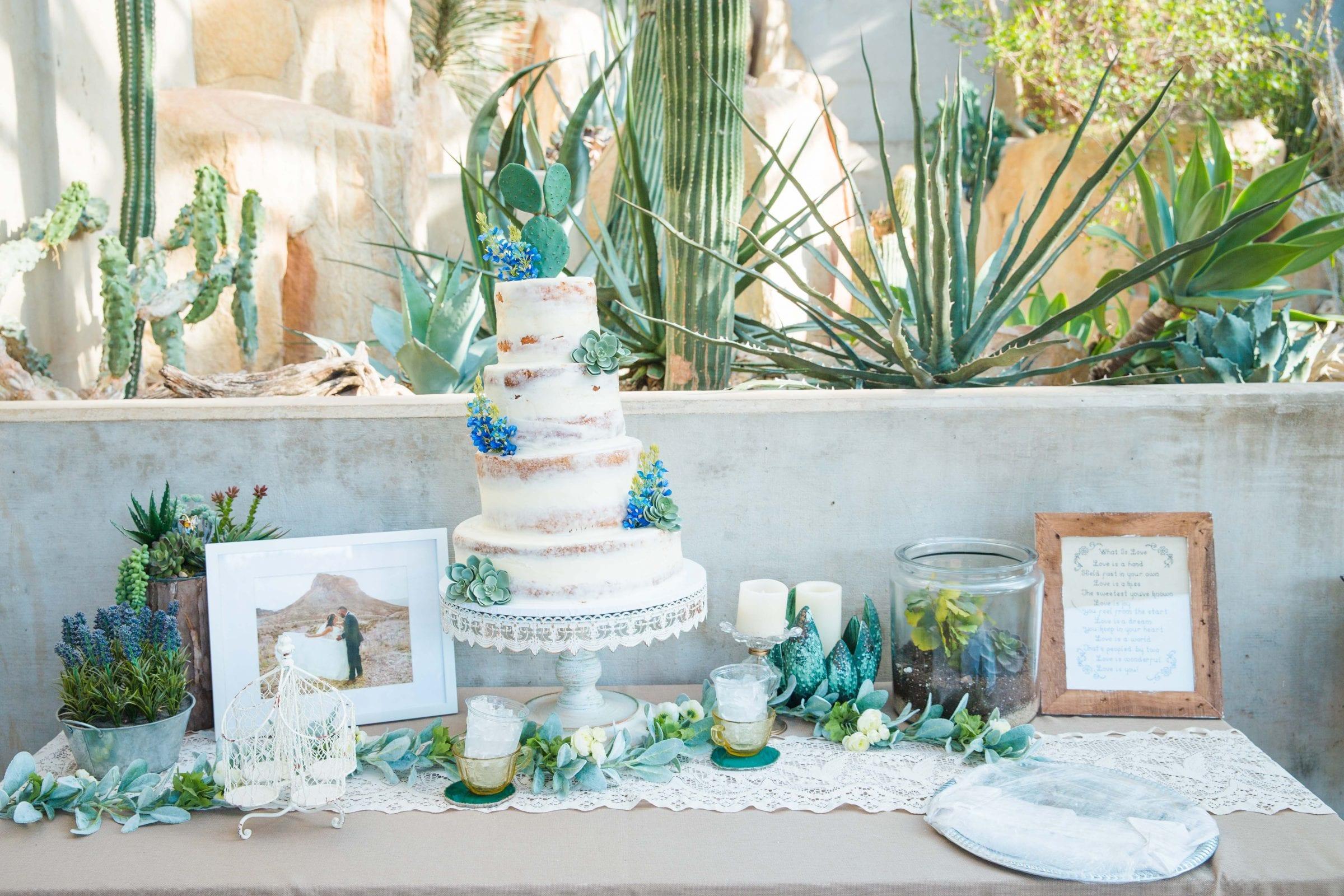 Courtney Amaya wedding San Antonio Botanical Garden cake table