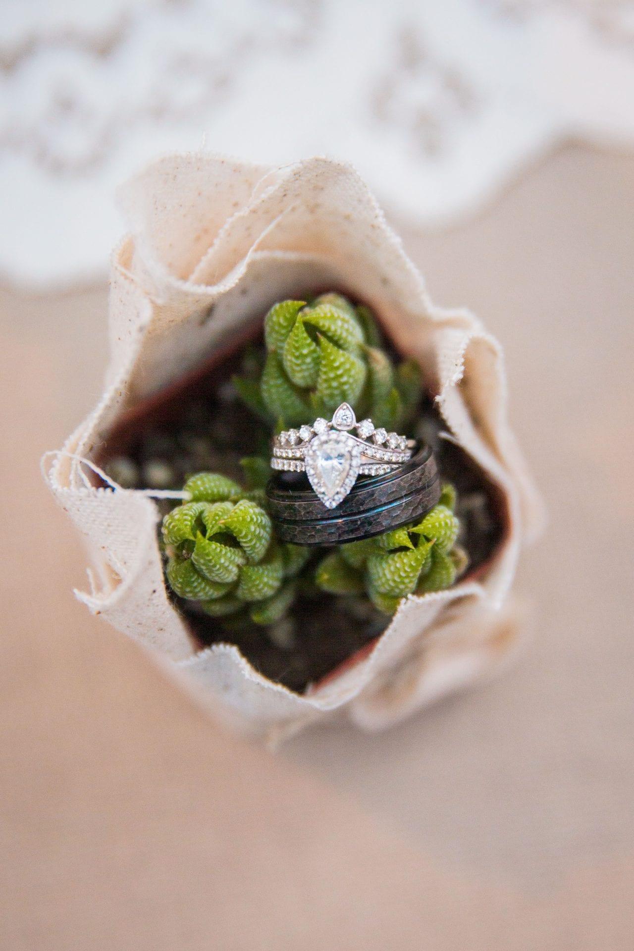 Courtney Amaya wedding San Antonio Botanical Garden rings
