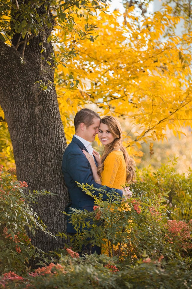 olivia's engagement landa library in the fall trees