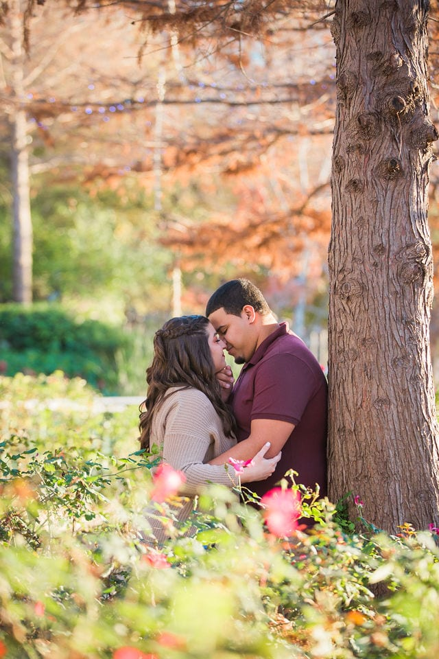 Dana and Andrews engagement session at the Pearl by the tree kissing